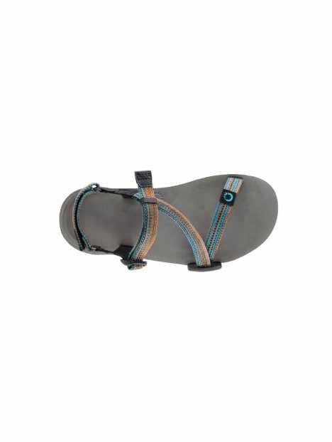 Dessus Xero Shoes Z-Trail